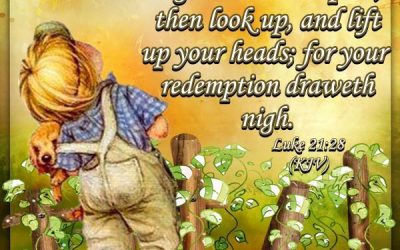 When These Things Begin to Happen, Then Look Up, Lift Up Your heads; For Your Redemption Is Near!